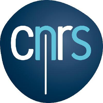 Logo CNRS filaire couleur