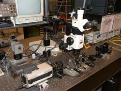 Plate-forme de test des composants optiques
